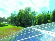 solar hatchery