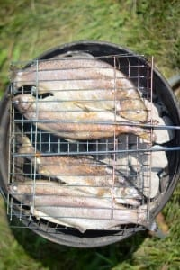 grilling fish