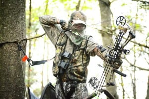 tree stand safety 4C