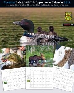VTFW calendar