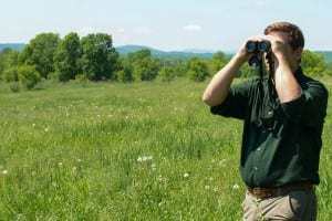Ample opportunities exist to look for breeding birds throughout the spring and summer on Vermont's 84 Wildlife Management Areas.
